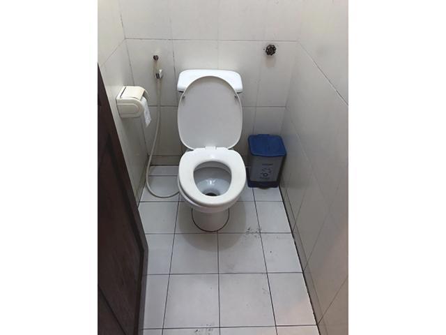 越南與日本廁所真乾淨